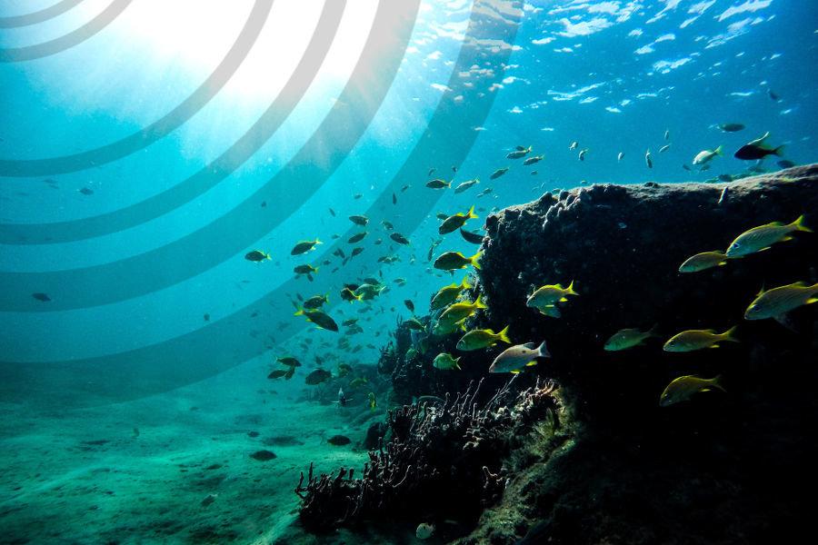Onderwatergeluid